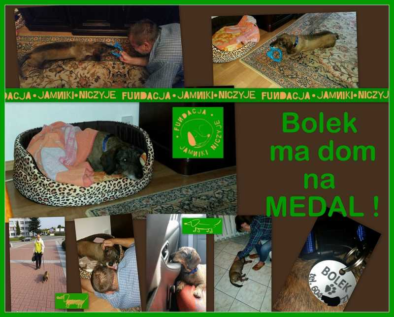 DSBolek.jpg